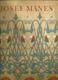 Josef Mánes - malíř vzorků a ornamentu